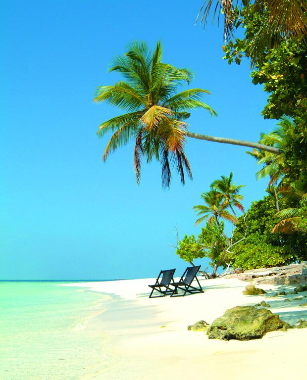210089996010f 3  Biyadhoo Island Resort - Maldives - All Inclusive (7 Nights)